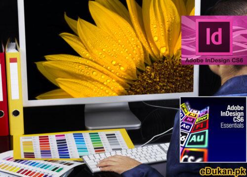 Adobe Indesign CS6 Course in Urdu